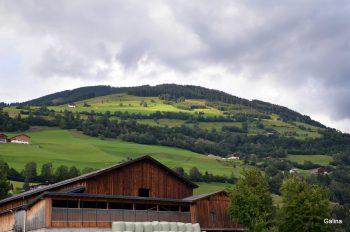 Альпийские луга