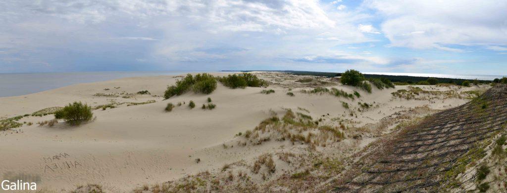 Высота Эфа на дюне Ореховая на Куршской косе