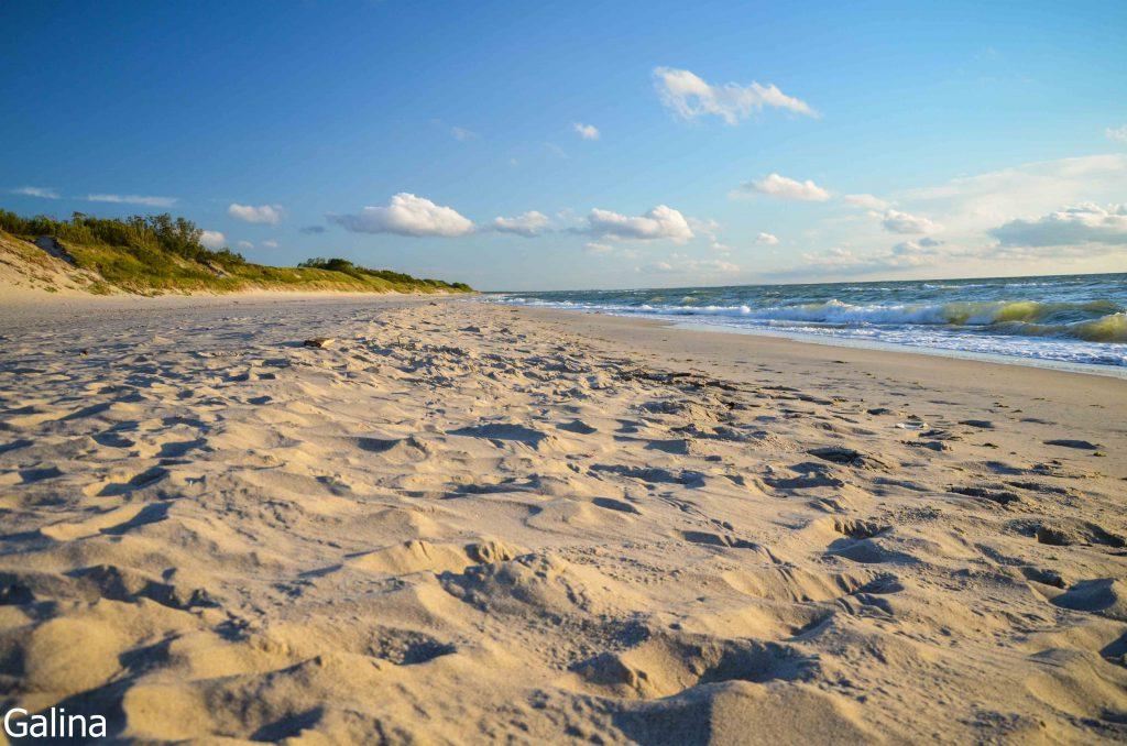 Пляж Балтийского моря на Куршской косе