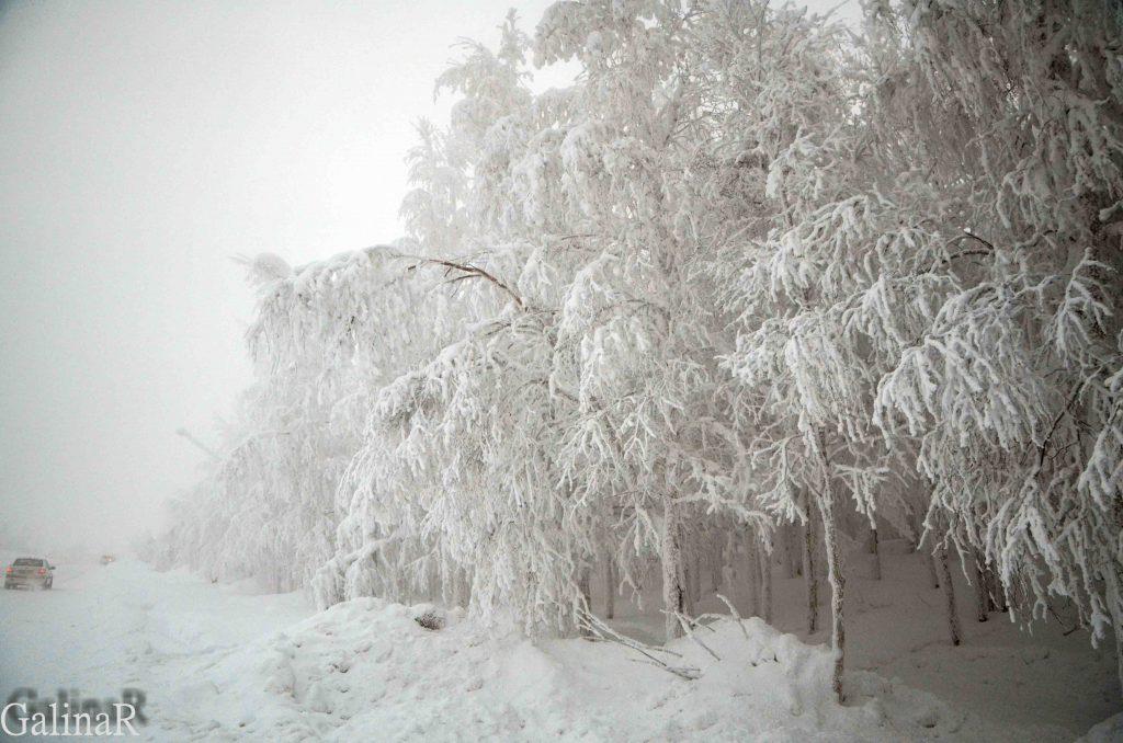 ГРЭС-2 в Сургуте