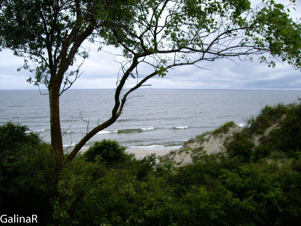 Вид с дальномерного бункера на море