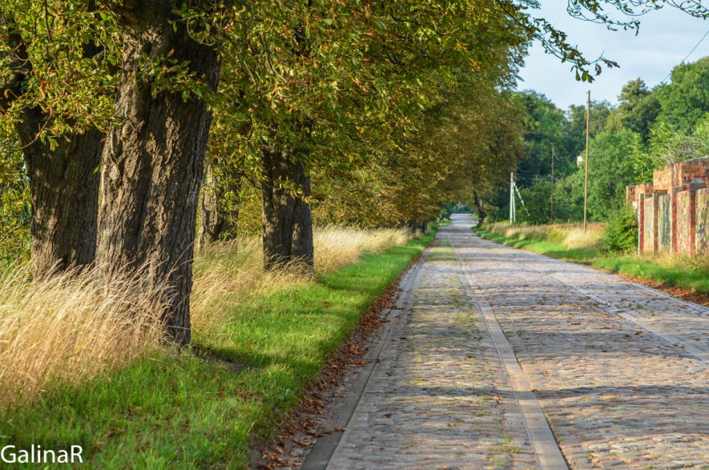 Дорога от вокзала в Железнодорожном Гердауэн