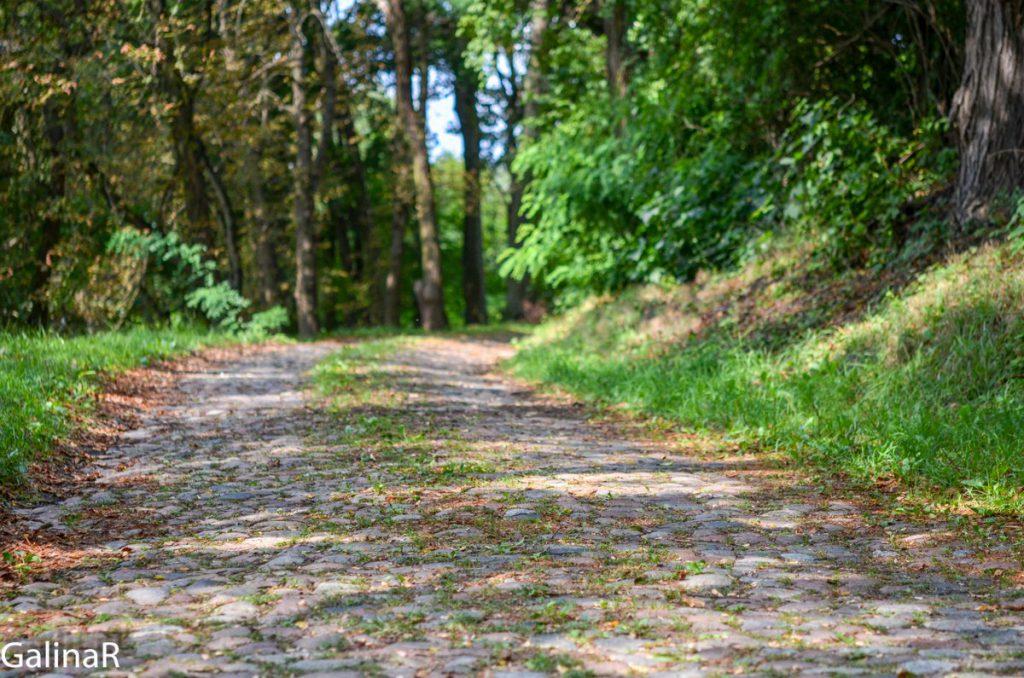 Дорога в замок Гердауэн в Железнодорожном