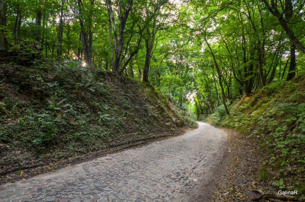 Дорога на Бальгу