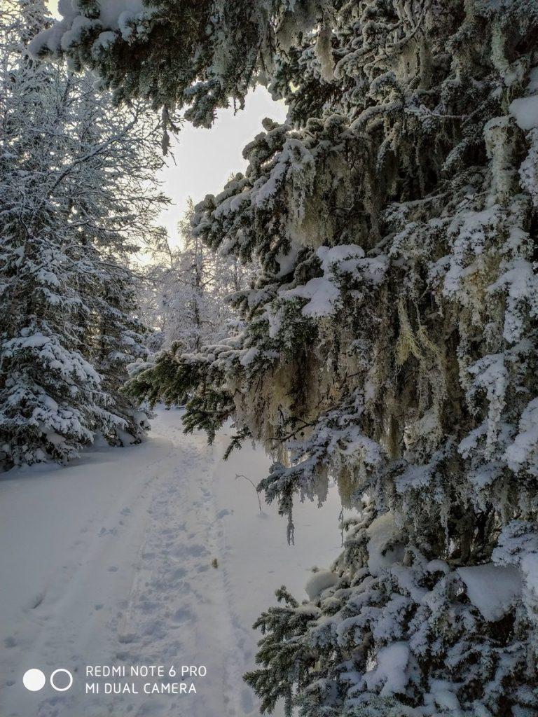 Тропа на хребте Зигальга зимой