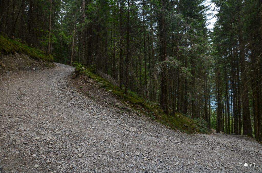 Спуск с горы Кройцек в Гармиш Партенкирхен
