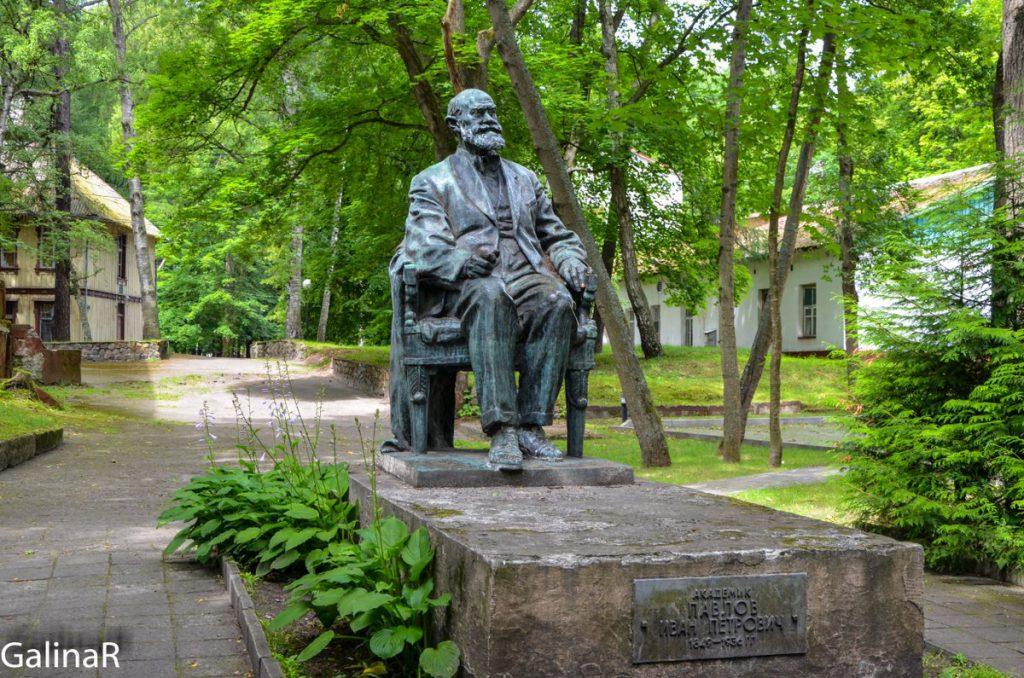 Памятник Павлову в Светлогорске