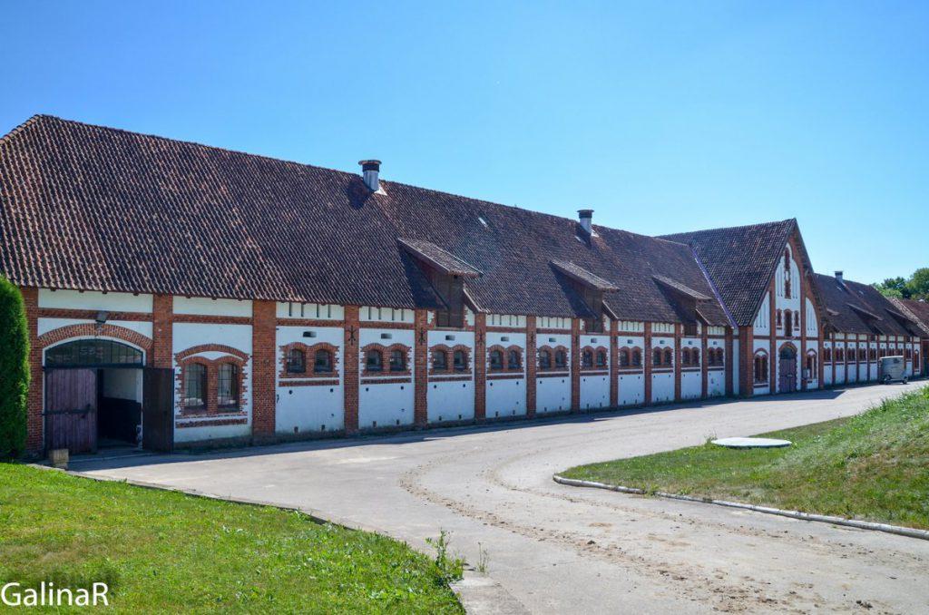 Конезавод Георгенбург