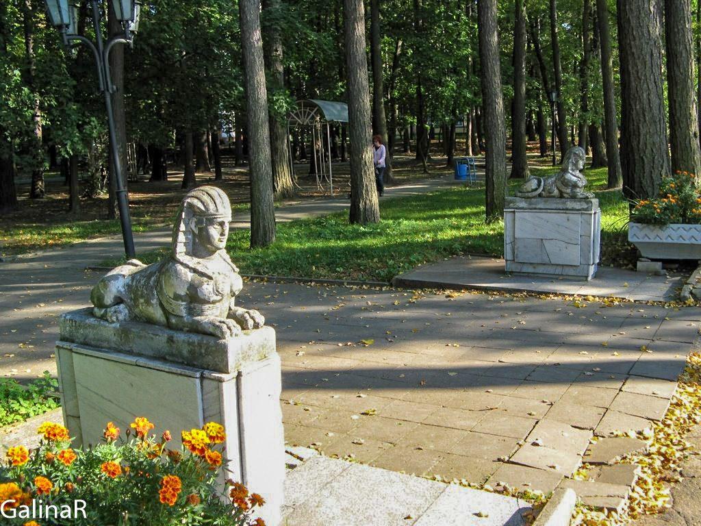 Лиственничный парк в Светлогорске