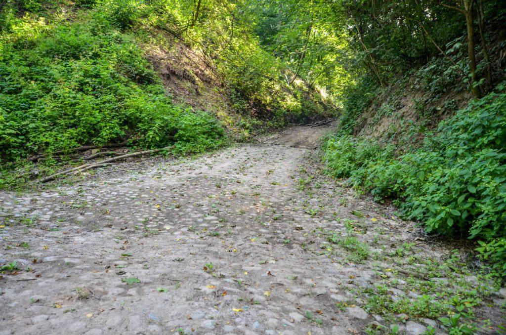 Дорога к замку Гросс Вонсдорф