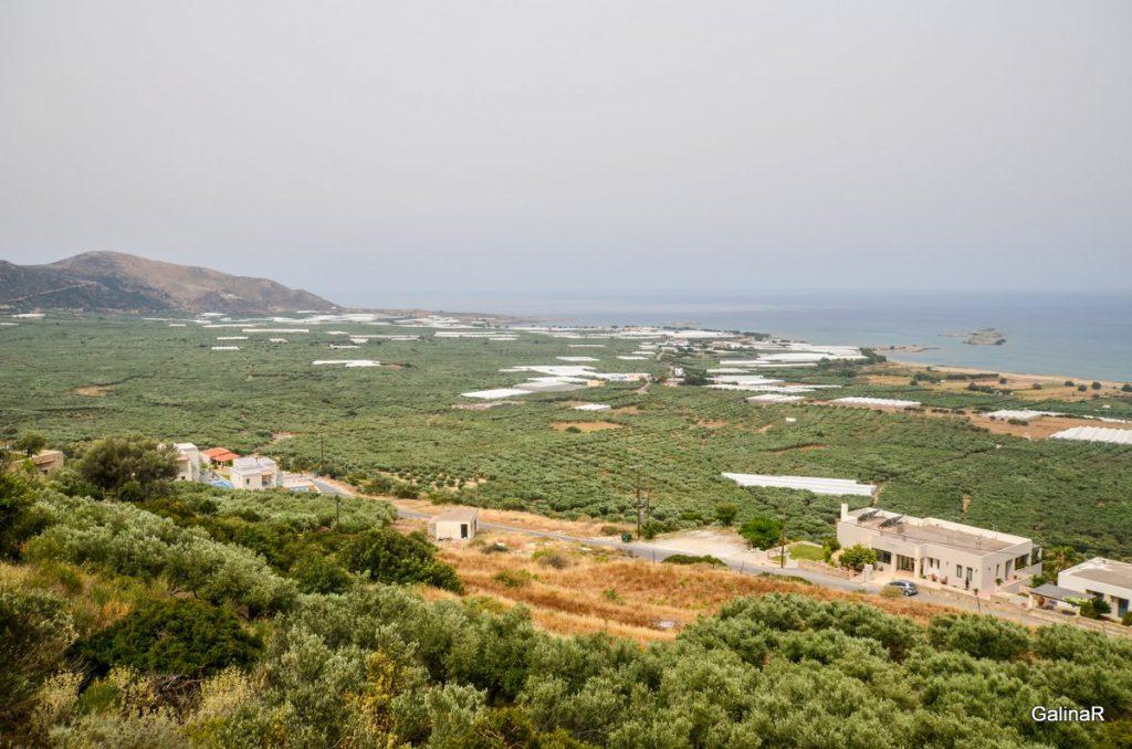 Оливковые рощи на пляже Фаласарна