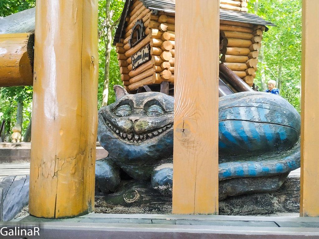 Коты символ Зеленоградска