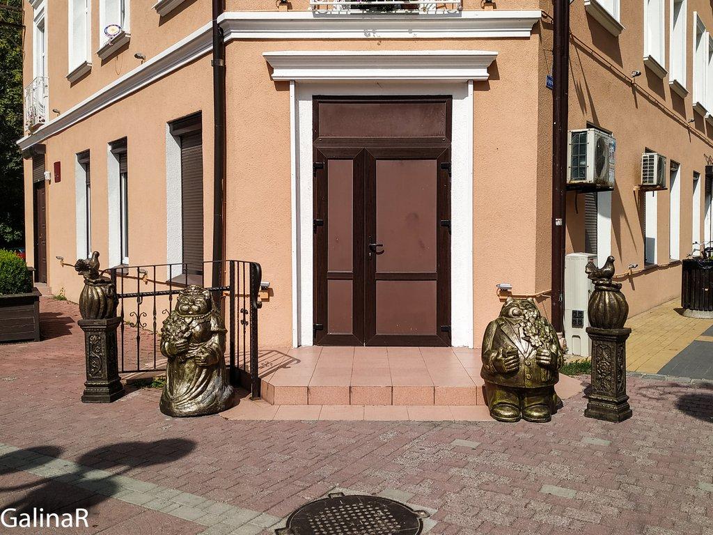 Коты у загса в Зеленоградске