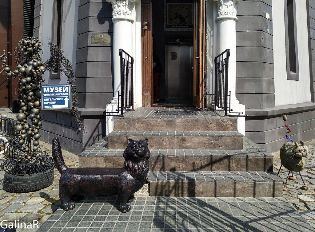 Музей котов в Зеленоградске